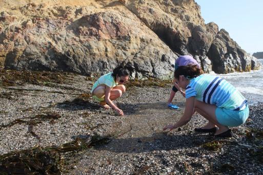 mò pha lê trên bãi cát toàn đá đen